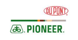 Agroservizi-Pioneer--SEMENTI-Dupon